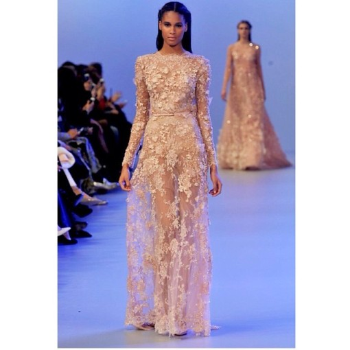 elie-saab-couture-ss14-paris-Cindy Bruna-4