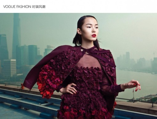 ValentinoMy-Name-is-Red-by-Li-Qi-for-Vogue-China-Collections-February-Extra-2014-3-767x1024