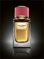 Dolce and Gabbana's VelvetCollection